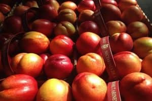 Livraison fruits bio - bob-bien o boulot-fruitsbio-livraison corbeilles de fruits paris-corbeilles fruits paris-fruits bio paris-entreprise