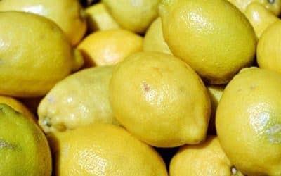 Le citron a t'il un pépin ?